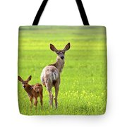 Mule Deer Doe And Fawn Looking Back Over Their Shoulders Tote Bag