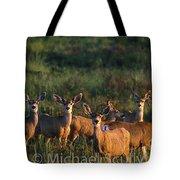 Mule Deer In Velvet 04 Tote Bag