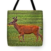 Mule Deer On The Sante Fe Trail Tote Bag