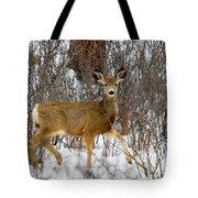 Mule Deer Portrait In Heavy Snow Tote Bag
