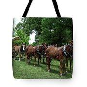 Mule Team Tote Bag