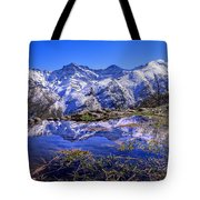 Mulhacen  Alcazaba And Vacares Tote Bag