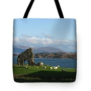 Mull And The Trossachs From Iona Tote Bag