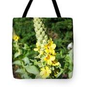 Mullein Wildflower Tote Bag