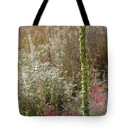 Mullin And Other Springtime Wildflowers Tote Bag