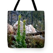 Mullin On The Mountain Tote Bag
