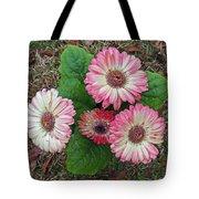 Multicolored Gerberas Tote Bag