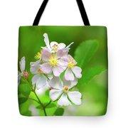 Multiflora Rose Tote Bag