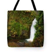 Multnomah Autumn Tote Bag