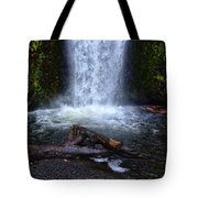 Multnomah Falls 5 Tote Bag