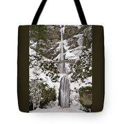 Multnomah Falls Winter Tote Bag