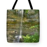 Munising Waterfall Tote Bag