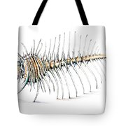 Murex Combus Shell Tote Bag