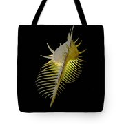 Murex Shell Tote Bag