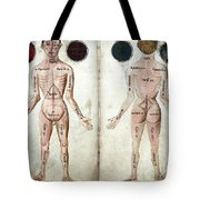 Muscle Man, Brains Ventricles, 15th Tote Bag