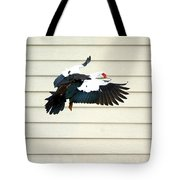Muscovy Duck In Flight Passing A Building Tote Bag