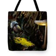 Mushroom Lantern Enchanted Forest Tote Bag