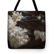 Mushroom On Idaho Log Tote Bag