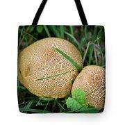 Mushroom Pair Tote Bag