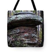 Mushroom Rock Tote Bag