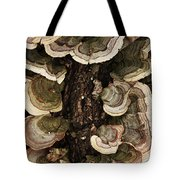 Mushroom Shells By The Lake Shore Tote Bag