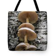 Mushroom Treehouse Tote Bag