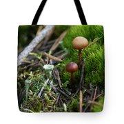 Mushroom Tundra Tote Bag
