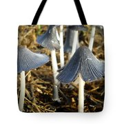 Mushrooms After A June Rain Tote Bag