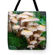 Mushrooms And Moss Tote Bag