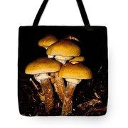 Mushrooms By Night Tote Bag