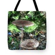 Mushrooms Hdr Tote Bag
