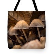 Mushrooms Hidden Between The Leaves Tote Bag
