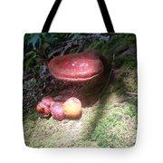 Mushrooms In Spotlight  Tote Bag