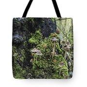 Mushroom Colony Tote Bag