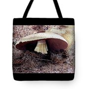 Mushrooms Under Firs Tote Bag