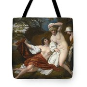 Musidora And Her Two Companions Sacharissa And Amoret At Their Bath Espied By Damon Tote Bag