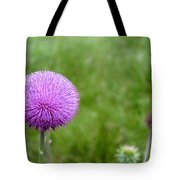 Musk Thistle Bloom Cycle Tote Bag