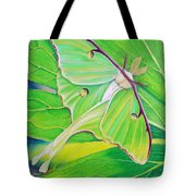 Must Be Dreaming Tote Bag by Amy Tyler