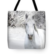 Winter Whites Tote Bag by Michele A Loftus