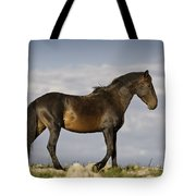 Mustang And Clouds 1 Tote Bag