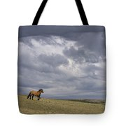 Mustang And Stormy Sky Tote Bag