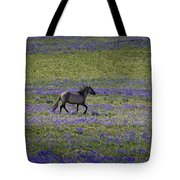 Mustang In Lupine 1 Tote Bag by Roger Snyder