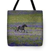 Mustang In Lupine 1 Tote Bag