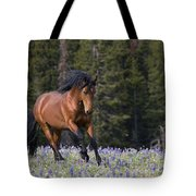 Mustang Stallion And Lupines Tote Bag