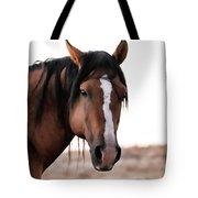 Mustang Stallion Tote Bag