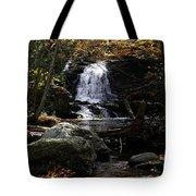 Necessity Of Change Tote Bag