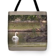 Mute Swan         St. Joe River          June         Indiana Tote Bag