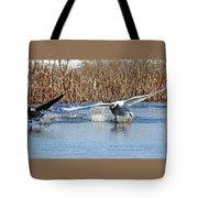 Mute Swan Chasing Canada Goose I Tote Bag