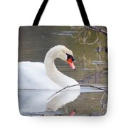 Mute Swan I Tote Bag