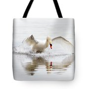 Mute Swan Landing II Tote Bag